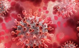 COVID-19 Vaccine Fraud