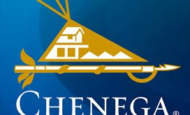 Chenega Security