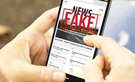 Online Disinformation